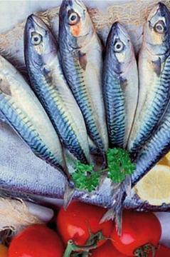 lista pescados azules 1