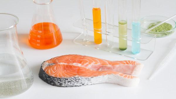 mercurio nel pesce